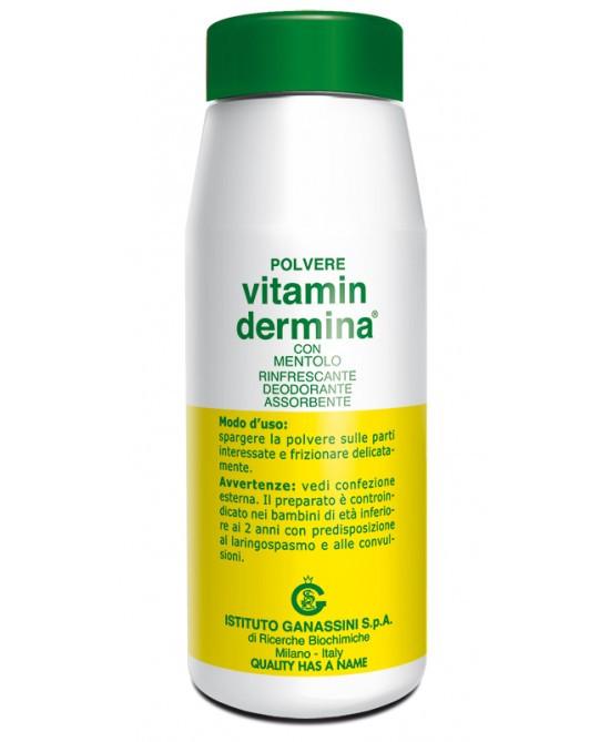 Vitamindermina Polvere Mentolo 100g prezzi bassi